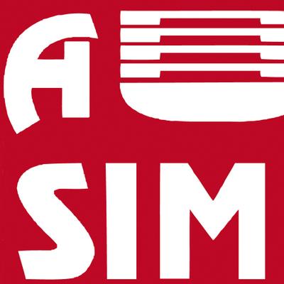 La transformation digitale des TPMEs marocaines en marche grâce à ITAMM, l'approche globale proposée par l'AUSIM
